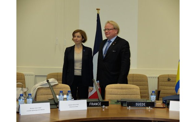 Meeting with Peter Hultqvist, Defence minister of Sweden